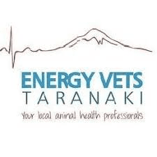 Energy Vets